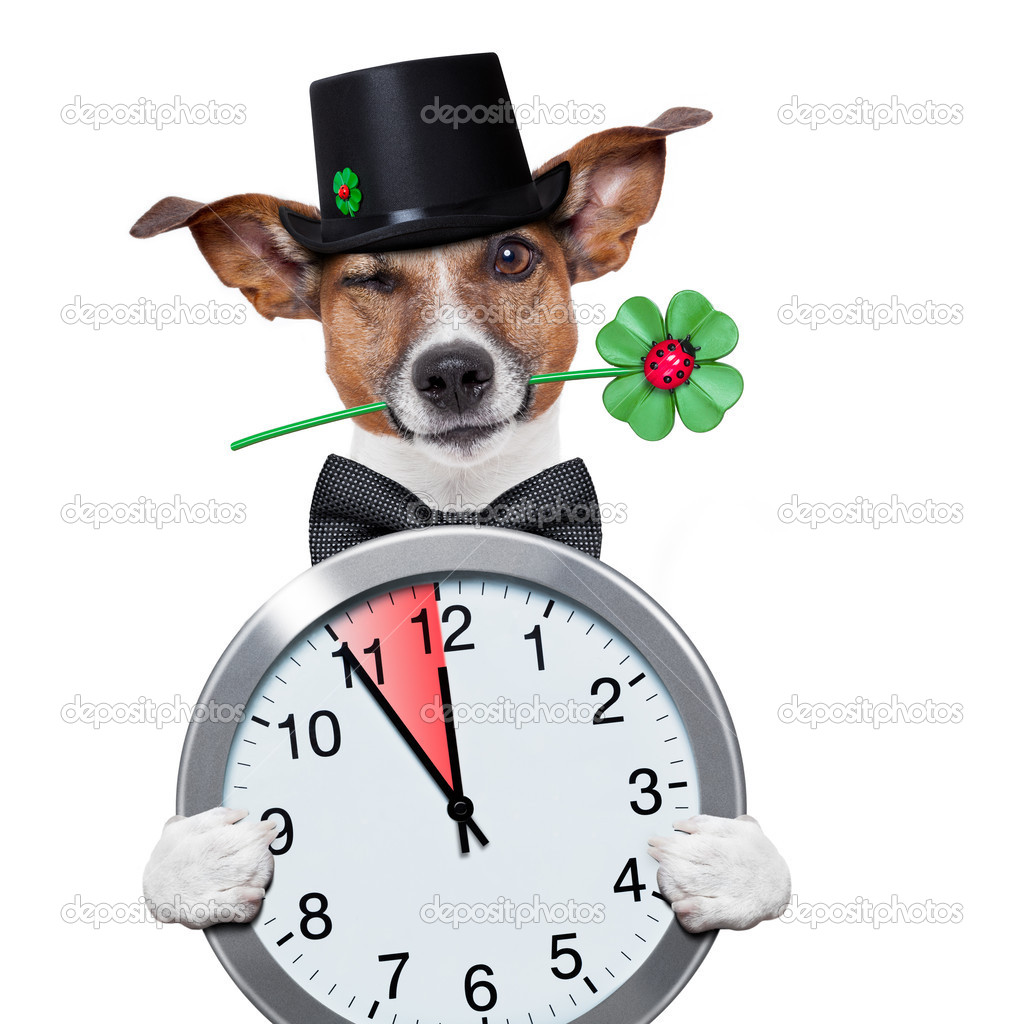 good luck chimney sweeper dog with hat and clock